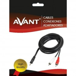 Cable audio jack 2 rca